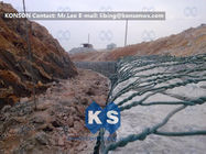 চীন Galvanized Gabion Basket Woven Hexagonal Wire Mesh PVC Coated Welded Gabions কোম্পানির